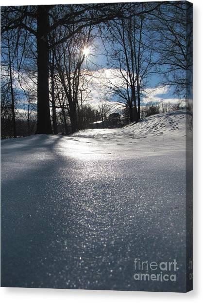 Sunlight On Snow Canvas Print