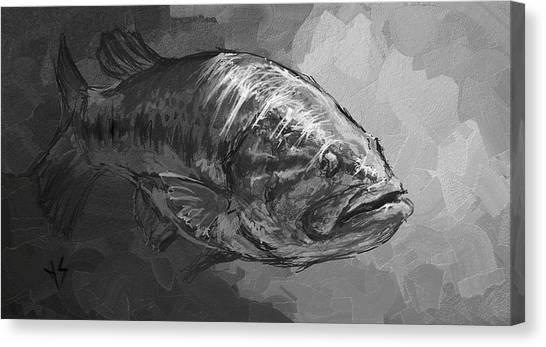 Catfish Canvas Print - Sunlight  by Yusniel Santos
