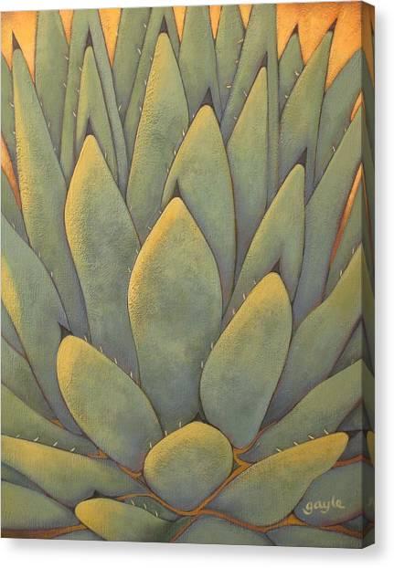 Sunlit Agave Canvas Print