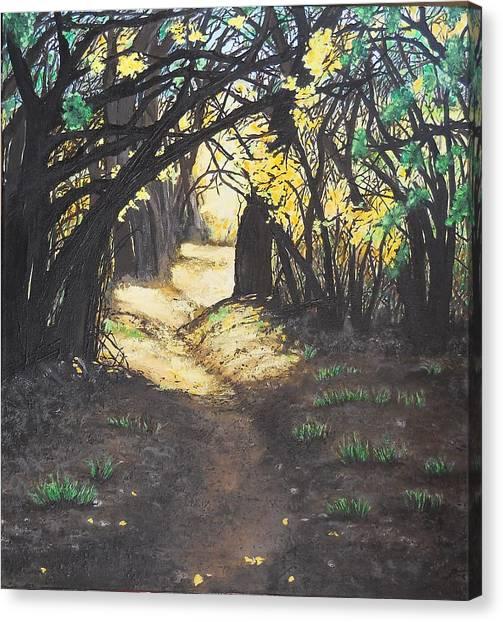 Sunlit Trail Canvas Print