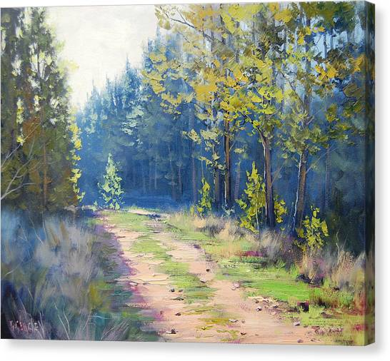 Pine Trees Canvas Print - Sunny Corner Pine Forest by Graham Gercken
