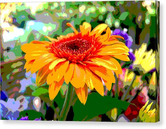 Canvas Print featuring the photograph Sunny Gerbera by Jocelyn Friis