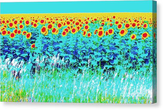 Sunny Kansas Canvas Print