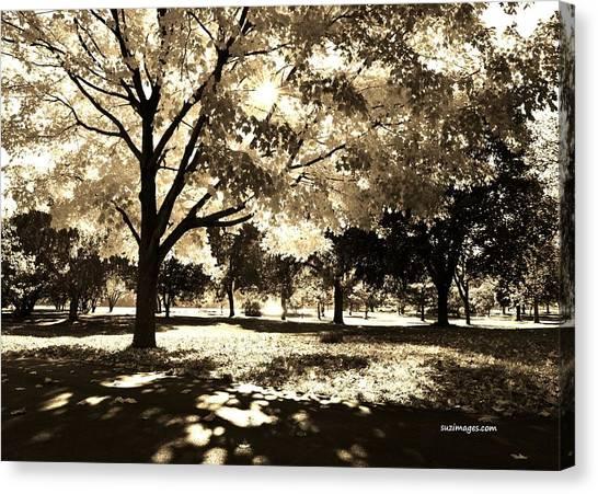 Sunny October Canvas Print