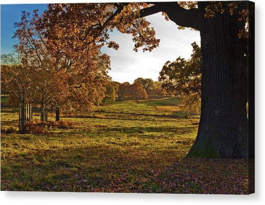 Sunny Richmond Autumn Canvas Print