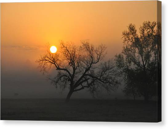 Sunrise And Fog Canvas Print