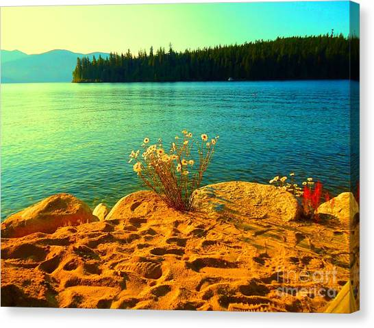 Sunrise At Daisy Lake Canvas Print