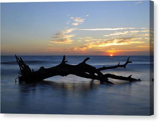 Sunrise At Driftwood Beach 7.2 Canvas Print