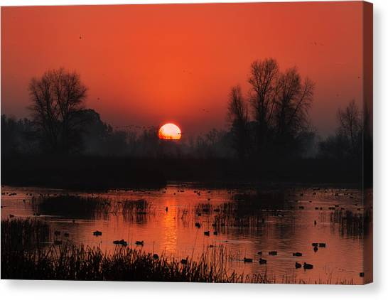 Big West Canvas Print - Sunrise At Gray Lodge by Kathleen Bishop