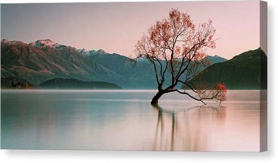 Sunrise At Lake Wanaka Canvas Print by Steve Daggar Photography