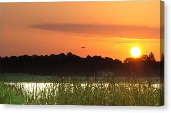 Sunrise At Lakewood Ranch Florida Canvas Print