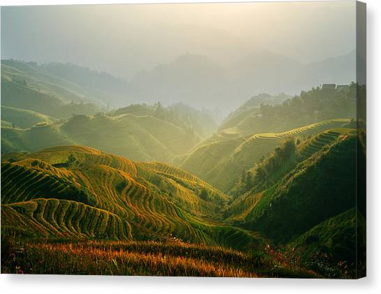 Sunrise At Terrace In Guangxi China 3 Canvas Print