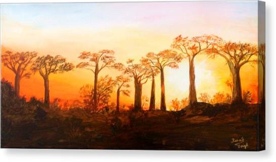 Sunrise Boab Trees Canvas Print