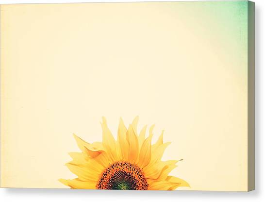 Sunflower Canvas Print - Sunrise by Carrie Ann Grippo-Pike
