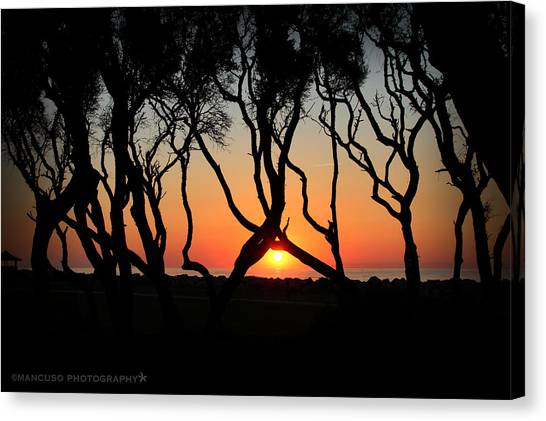 Sunrise Fort Fisher Canvas Print