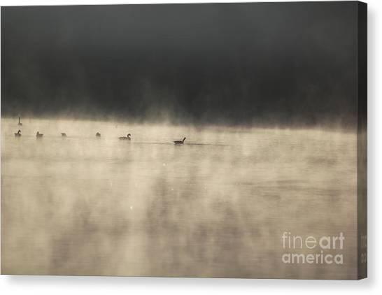 Sunrise Geese Canvas Print