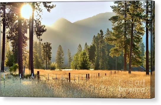 Sunrise Gold Canvas Print
