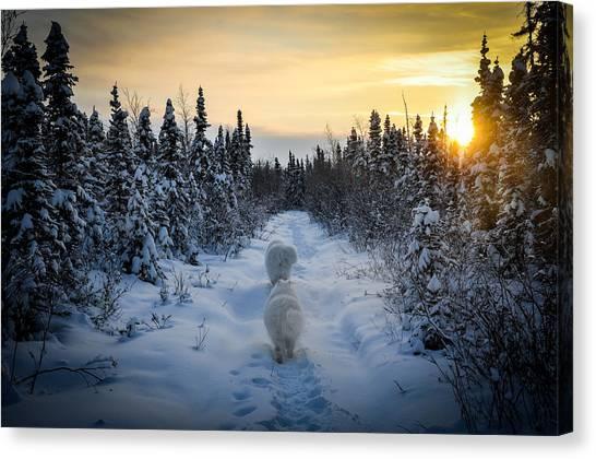 Sunrise Hike Canvas Print