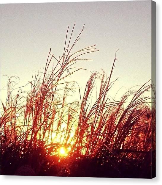 Sunrises Canvas Print - Sunrise #igersoflouisiana #iphone5 by Scott Pellegrin