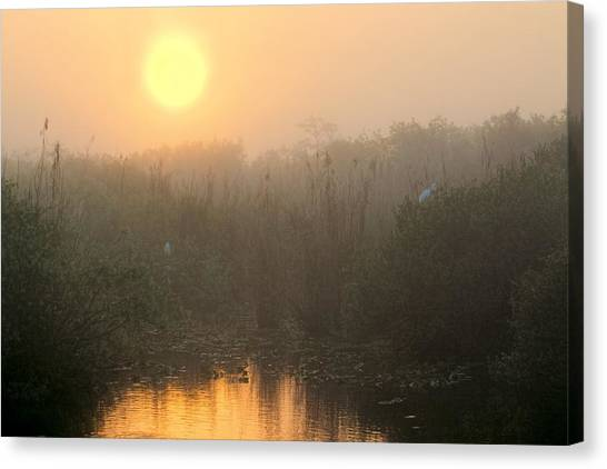 Sunrise In The Everglades Canvas Print