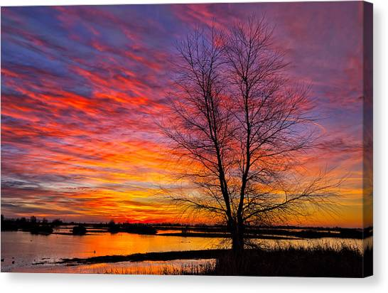 Sunrise In The Sacramento Valley Canvas Print