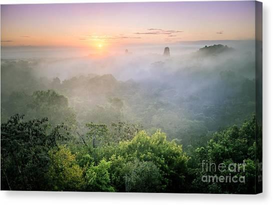 Sunrise In Tikal Canvas Print