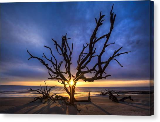 Sunrise Jewel Canvas Print