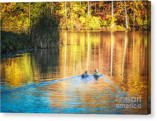 Sunrise Lake Rendezvous Canvas Print