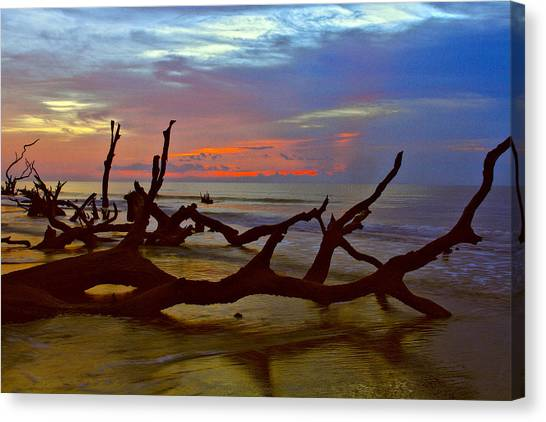 Sunrise On Bulls Island Canvas Print