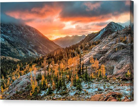 Sunrise On The Larches Canvas Print