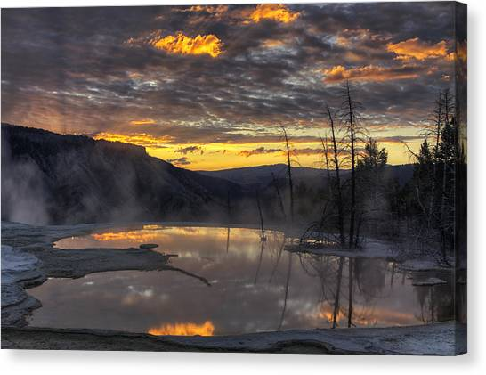 Yellowstone National Park Canvas Print - Sunrise On The Terrace by Mark Kiver