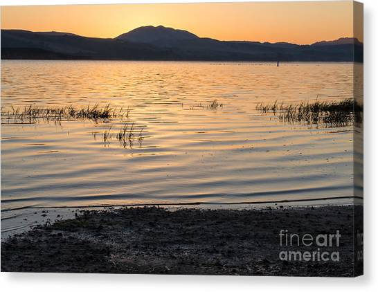 Sunrise On Tomales Bay - 262 Canvas Print by Stephen Parker