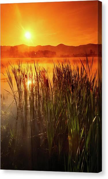Sunrise Over A Misty Pond Canvas Print by Richard Nowitz