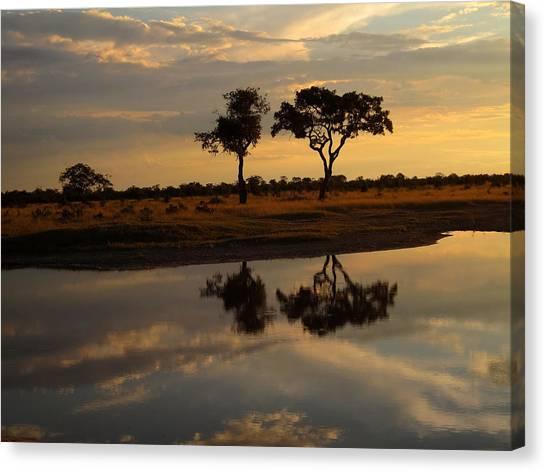 Sunrise Over Savuti Park Canvas Print