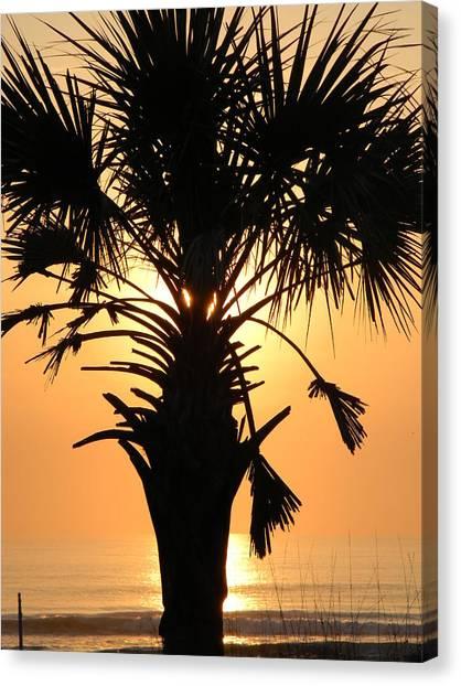 Sunrise Palm  Canvas Print by Joanne Askew