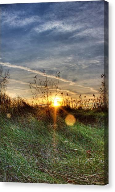 Religious Artist Canvas Print - Sunrise Through Grass by Tim Buisman