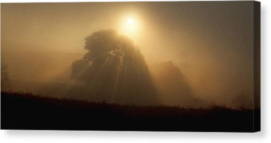 Sunrise Through The Fog Canvas Print