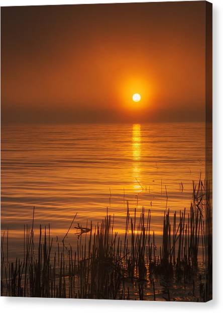 Lake Michigan Canvas Print - Sunrise Through The Fog by Scott Norris