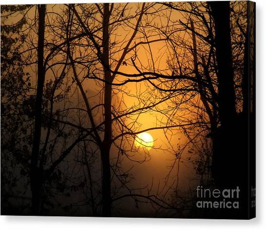 Sunrises Bloom Canvas Print