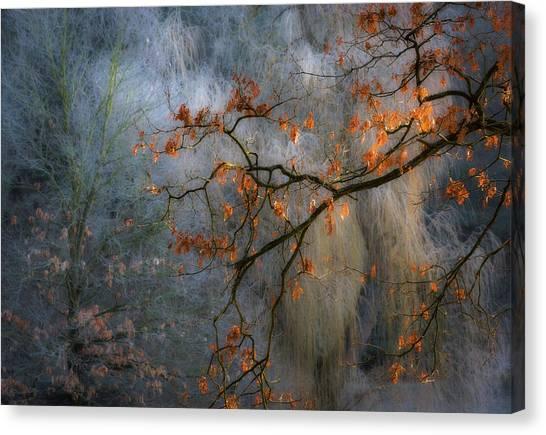 Autumn Leaves Canvas Print - Sunrise's Little Gem by Marek Boguszak