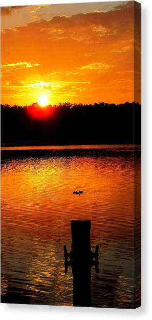 Sunset And Ducks Canvas Print by Will Boutin Photos