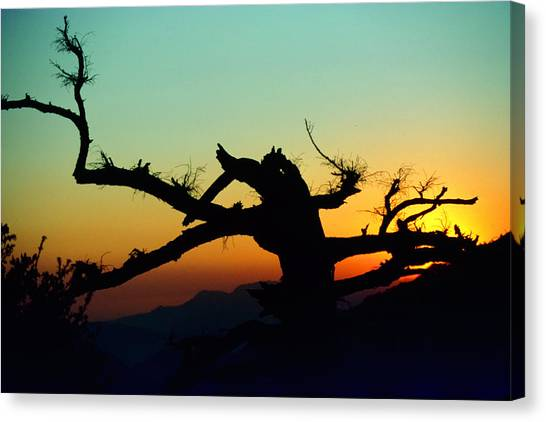 Sunset Angeles National Forest Canvas Print