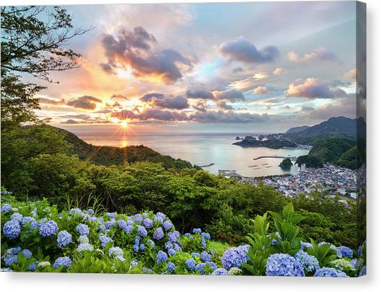 Sunset At Hydrangea Hills Canvas Print by Tommy Tsutsui