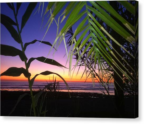 Sunset At Sano Onofre Canvas Print