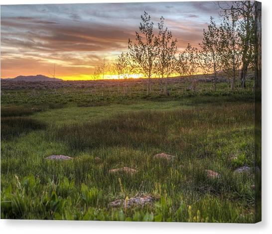 Sunset At Sunflower Flats Canvas Print