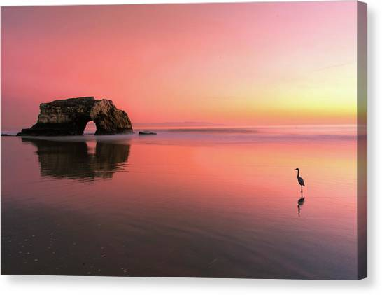Heron Canvas Print - Sunset At The Natural Bridge-2 by Rob Li
