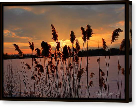 Sunset At The Pond 3 Canvas Print