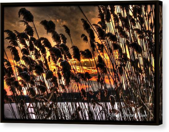 Sunset At The Pond 5 Canvas Print