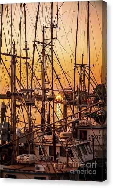 Sunset Boat Masts At Dock Morro Bay Marina Fine Art Photography Print Sale Canvas Print