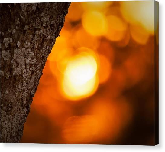 Sunset Bokeh Canvas Print